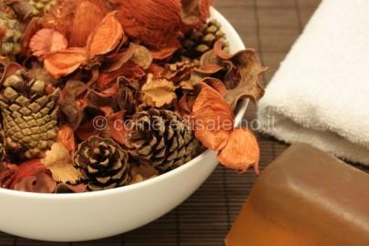 Fiori-e-erbe-aromatiche-come-profumare-casa-con-cannella-origano-e-rosmarino-640x426
