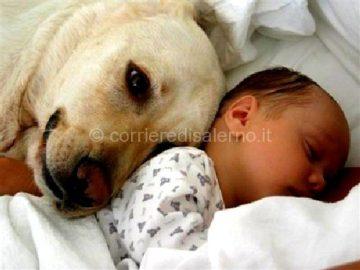 bambini-e-cani.jpgwww.tuttozampe.com_