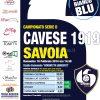 Cavese locandina 2014