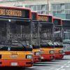 trasporto.pubblico.locale