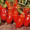 pomodoro-san-marzano