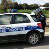 guardie_zoofile_enpa_1