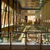 museo-provinciale-archeologico-salerno