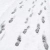 impronte-nella-neve-dicembre-2015
