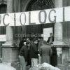 sociologia ok